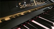 Schulze Pollmann