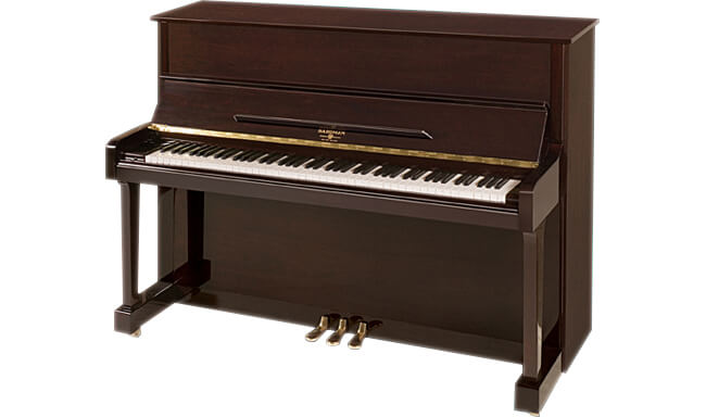 Professional Upright 48″