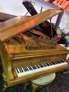 "<img alt=""Bluthner Grand Piano 1."">"