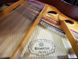 "<img alt=""Ritmüller Pianos 2."">"